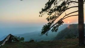 美好的timelapse日落暮色风景在雨林里。 股票视频