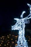 美妙圣诞节的驯鹿 库存图片