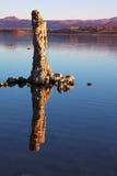 美妙地美妙的礁石 免版税库存照片