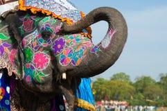 美妙地被绘的大象在印度 免版税库存照片