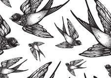 美妙地详细的与飞行燕子鸟的葡萄酒样式无缝的样式 被隔绝的传染媒介艺术品 典雅的纹身花刺艺术 库存例证