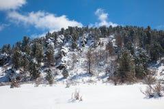 美妙横向的冬天 库存照片