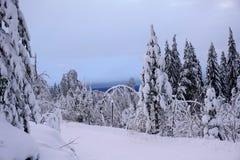 美妙的冬天场面在芬兰 库存照片