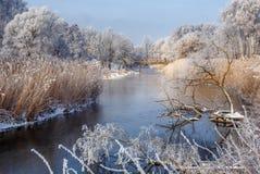 美妙的冬天场面 免版税库存图片