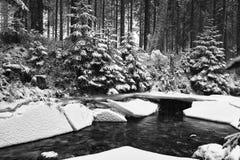 美妙的冬天森林和一条河在冰下 免版税图库摄影