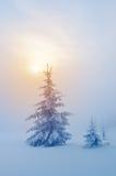 美妙的图象横向向量冬天 免版税库存照片