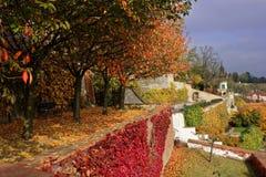 美妙的多彩多姿的秋天庭院 免版税库存图片