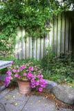 美妙的庭院 免版税库存照片