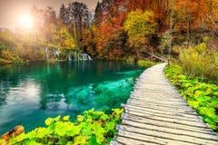 美妙的旅游路在五颜六色的秋天森林, Plitvice湖,克罗地亚里 免版税图库摄影