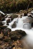 美妙的柔滑的缎软的河瀑布在有岩石的深森林里在长的曝光 免版税图库摄影
