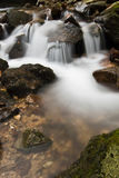 美妙的柔滑的缎软的河瀑布在有岩石的深森林里在长的曝光 免版税库存照片