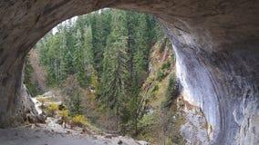 美妙的桥梁自然曲拱 图库摄影
