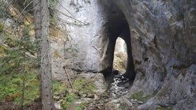 美妙的桥梁自然曲拱 库存照片