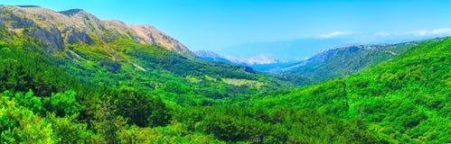 美妙的浪漫夏天下午风景全景 绿化,在峡谷高原鲜绿色谷  落叶林巴斯卡 图库摄影