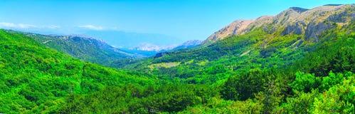 美妙的浪漫夏天下午风景全景 绿化,在峡谷高原鲜绿色谷  落叶林巴斯卡 免版税库存照片