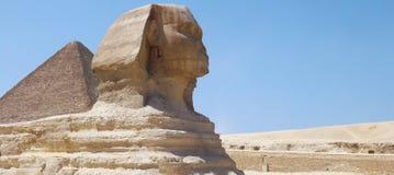 美妙的狮身人面象在沙漠 免版税库存图片