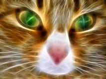 美妙的猫 皇族释放例证
