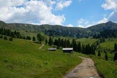 美妙的田园诗全景阿尔卑斯和山在白云岩 库存照片