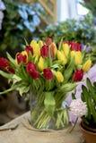 美妙的红色和黄色郁金香 免版税库存图片