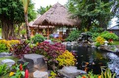 美妙的色的庭院在亚洲 图库摄影