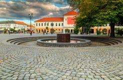美妙的街道视图在Sfantu Gheorghe市中心,特兰西瓦尼亚,罗马尼亚 免版税图库摄影