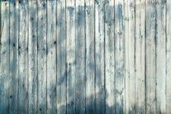 美妙的颜色木墙壁纹理 库存图片