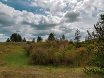 美妙的风景的照片与象草的草甸和树木丛生的小山的 库存图片