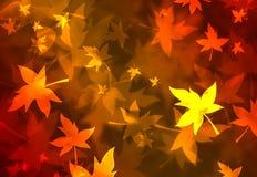美妙背景的秋天 免版税库存照片