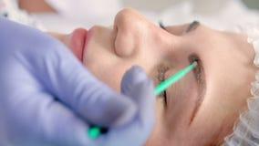 美容师做除油眼眉或申请底漆使用microbrush 股票录像