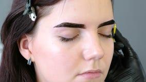美容师在有刷子的客户` s眼眉上把油漆放 特写镜头正面图 眼眉更正 股票视频