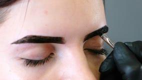 美容师在有刷子的客户` s眼眉上把油漆放 特写镜头注视看法 眼眉更正 股票视频