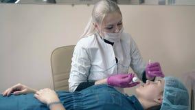 美容师应用在妇女眼眉的油漆在沙龙 影视素材