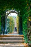 美泉宫在维也纳,形成金合欢的一个绿色隧道浪漫庭院走道在Vienn 库存图片