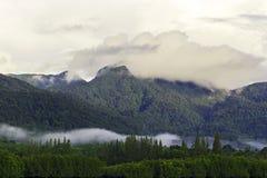 美洲红树和小山的看法早晨是阴暗的 免版税图库摄影