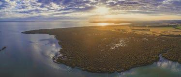 美洲红树空中全景临近海洋海岸线在美好的日落 免版税库存照片