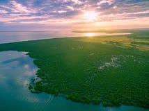 美洲红树鸟瞰图临近海洋海岸线在美好的日落 库存照片