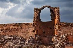 美洲黑杜鹃,古老废墟城市 库存照片