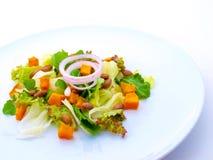 美食的轻的牌照沙拉白色 库存图片