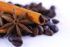 美洲黑杜鹃、咖啡和桂香 免版税库存照片