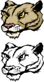 美洲狮徽标吉祥人豹 库存照片