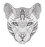 美洲狮,美洲狮,美洲狮,豹顶头zentangle传统化了, ve 免版税图库摄影