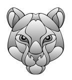 美洲狮头 库存图片