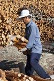 美洲红树木炭做 免版税图库摄影