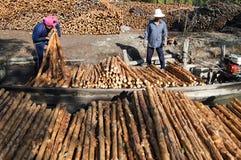 美洲红树木炭做 免版税库存图片