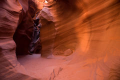 羚羊亚利桑那峡谷页上面的美国 免版税图库摄影