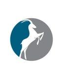 羚羊抽象传染媒介1业务保险摘要 免版税库存照片