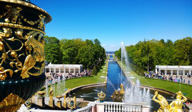 主群的顶视图明亮的喷泉在Peterhof,装饰绿色美丽的花瓶片断在前景的 库存照片