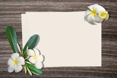 羽毛或赤素馨花和纸在木背景 免版税库存照片