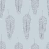 羽毛样式 免版税库存照片