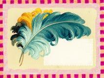 羽毛框架海报葡萄酒 库存图片